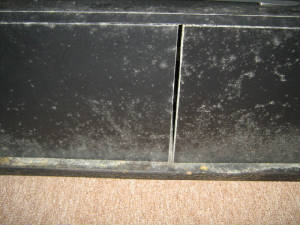 Humidity mold growth on an entertainment center